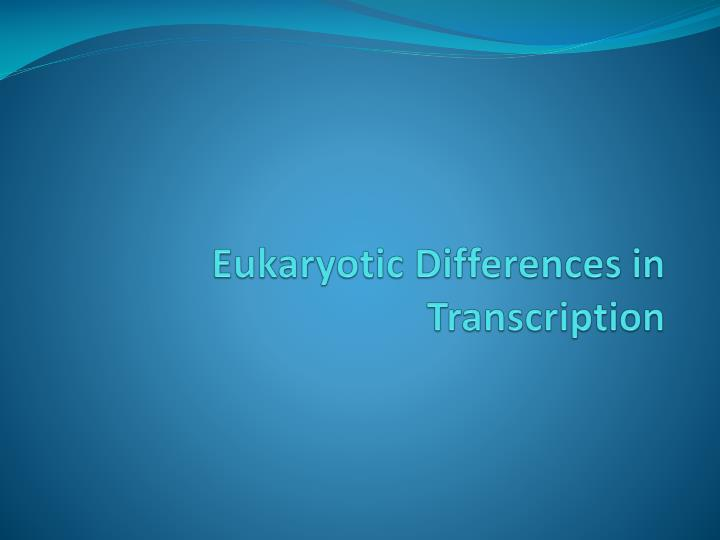 Eukaryotic Differences in Transcription