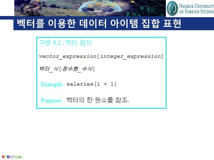 벡터를 이용한 데이터 아이템 집합 표현