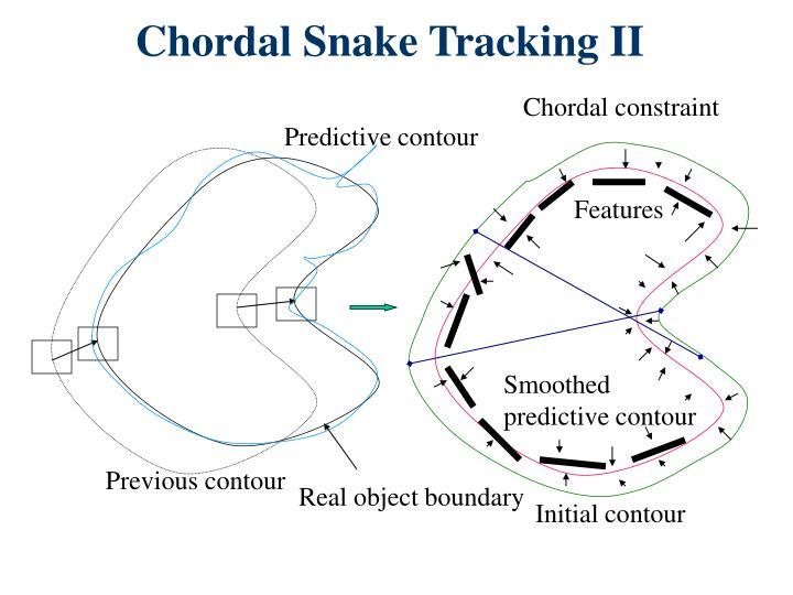 Chordal Snake Tracking II