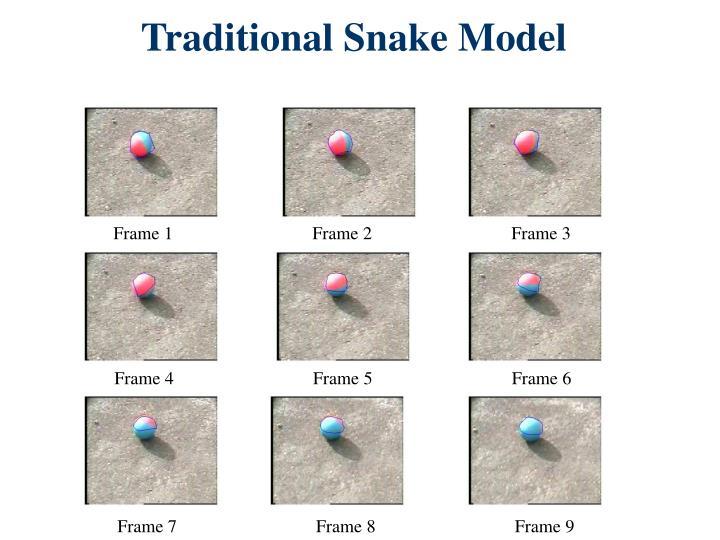 Traditional Snake Model