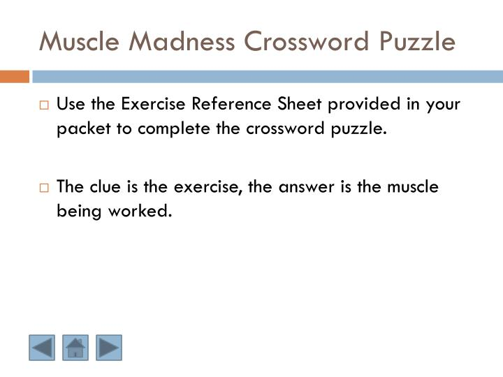 Muscle Madness Crossword Puzzle
