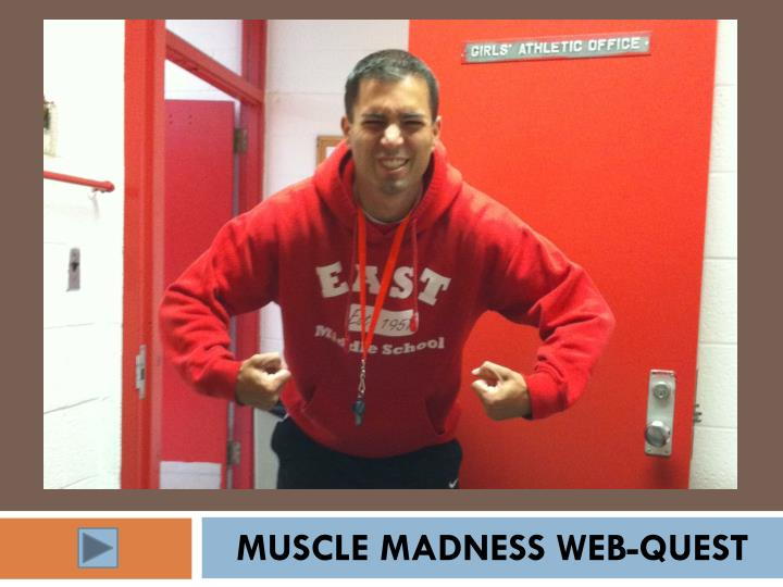 Muscle madness web quest