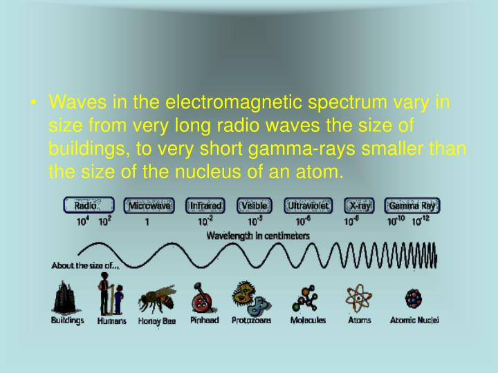 Waves in the electromagnetic spectrum vary in size from very long radio waves the size of buildings, to very short gamma-rays smaller than the size of the nucleus of an atom.