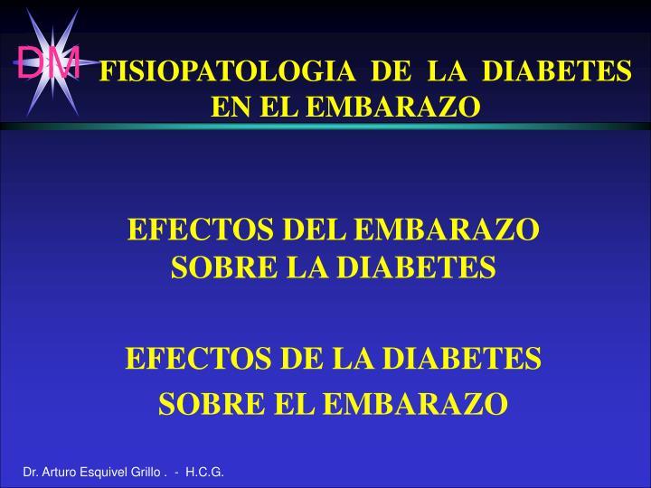 FISIOPATOLOGIA  DE  LA  DIABETES