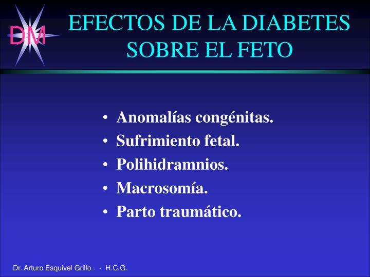 EFECTOS DE LA DIABETES