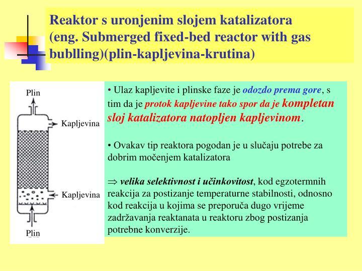 Reaktor s uronjenim slojem katalizatora