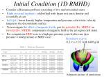 initial condition 1d rmhd