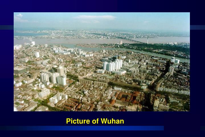 Picture of Wuhan