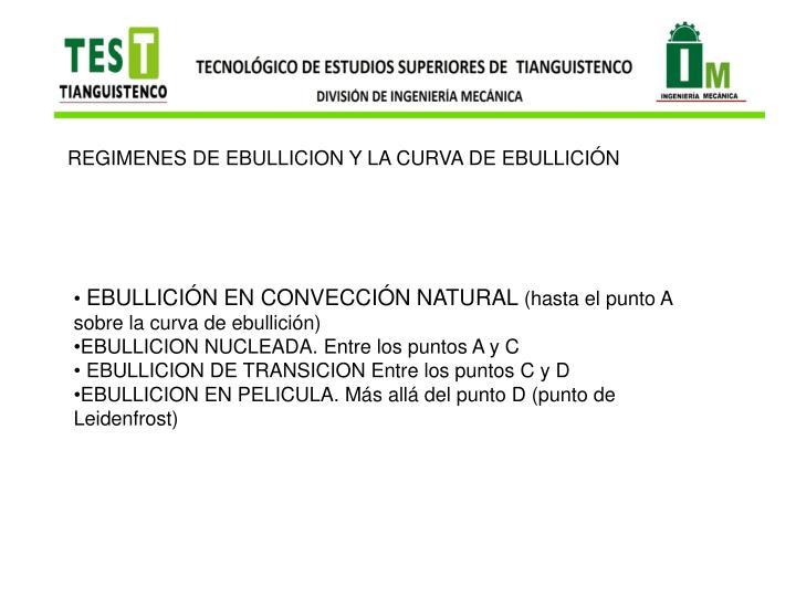 REGIMENES DE EBULLICION Y LA CURVA DE EBULLICIÓN
