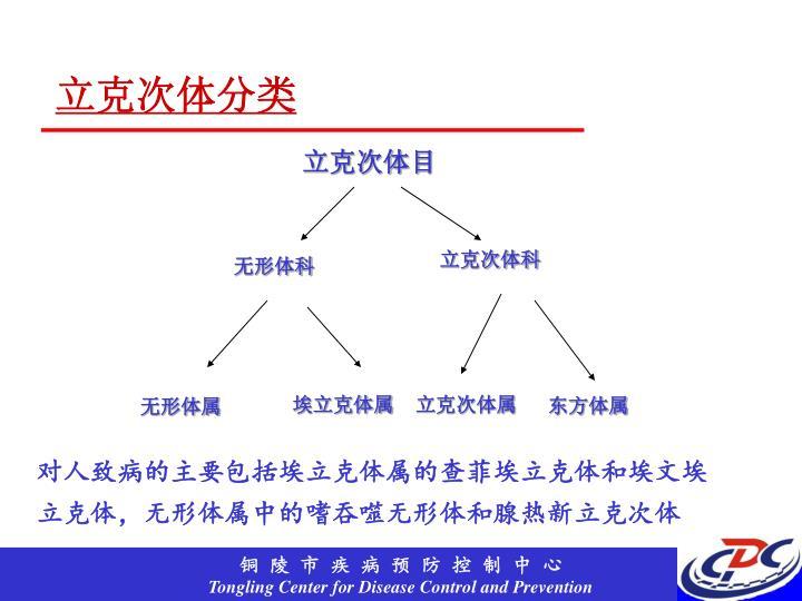立克次体分类