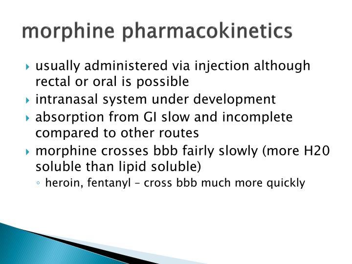 morphine pharmacokinetics