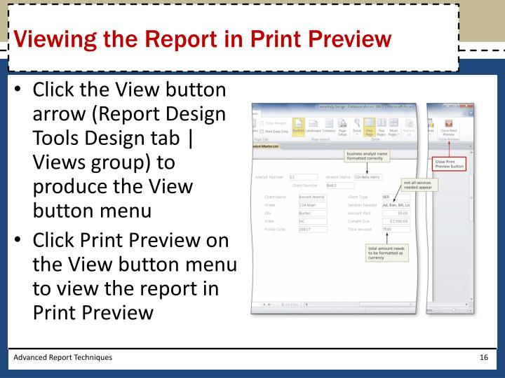 Viewing the Report in Print Preview