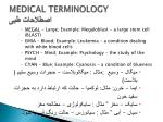 medical terminology7