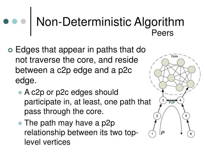 Non-Deterministic Algorithm