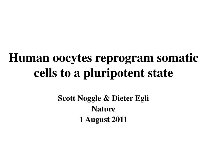 Human oocytes reprogram somatic cells to a pluripotent state