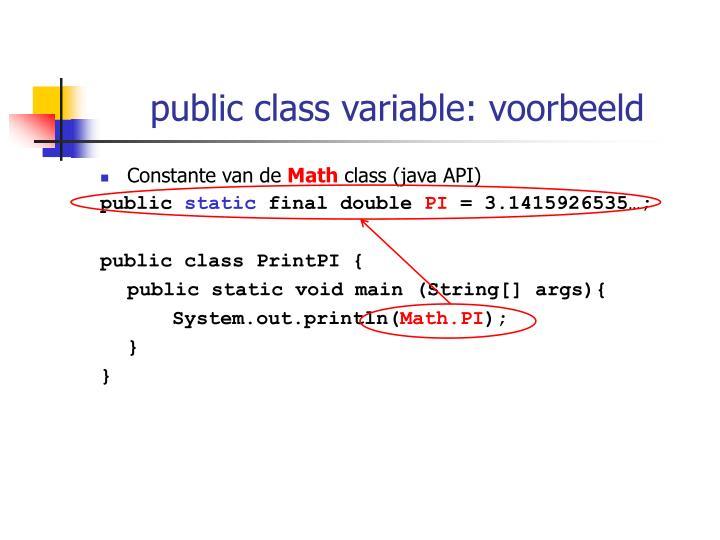 public class variable: voorbeeld