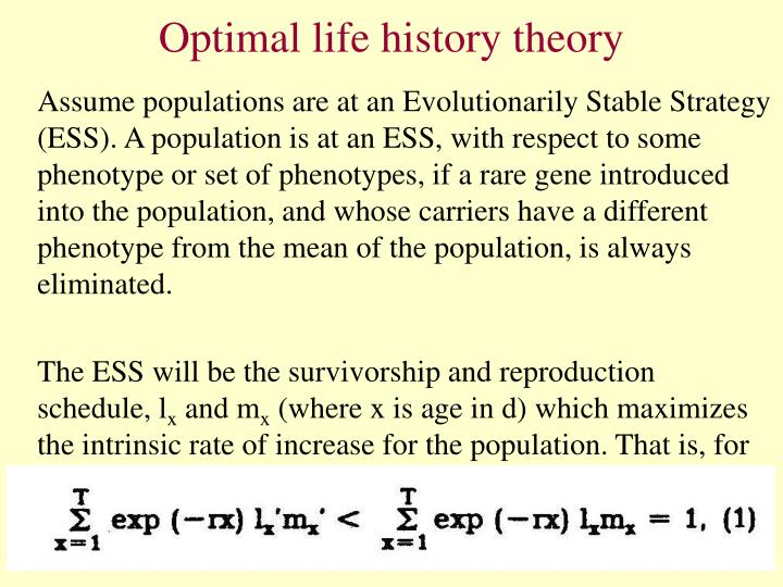 Optimal life history theory