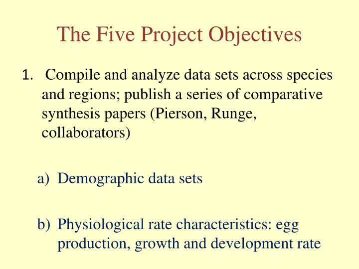 The Five Project Objectives