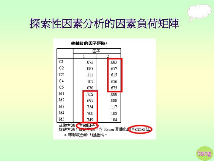探索性因素分析的因素負荷矩陣