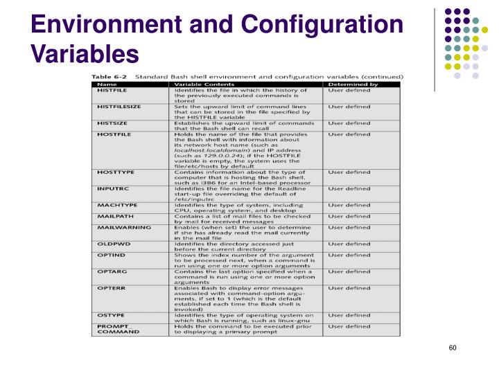 Environment and Configuration Variables