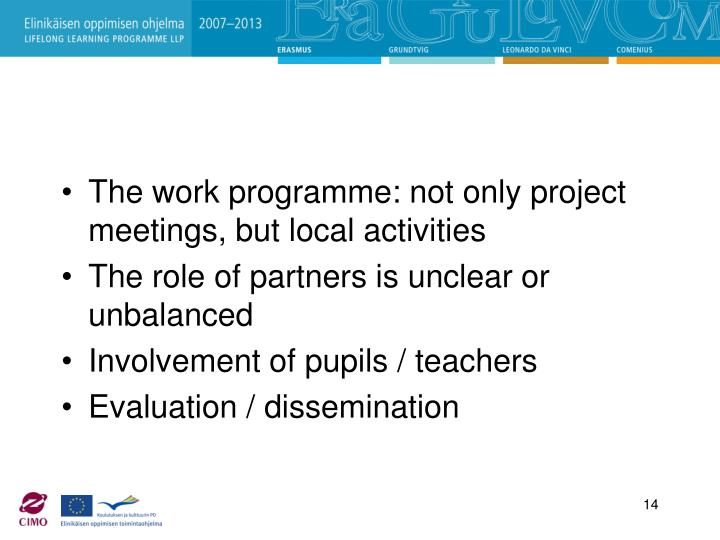 The work programme: not only project meetings, but local activities