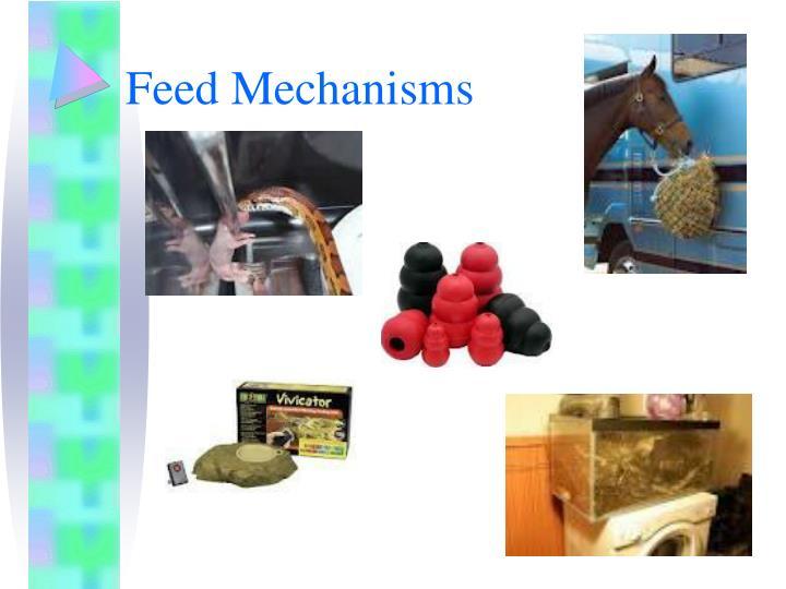 Feed Mechanisms