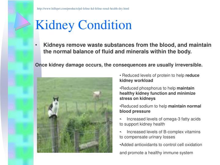 http://www.hillspet.com/products/pd-feline-kd-feline-renal-health-dry.html