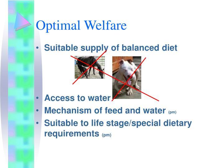 Optimal Welfare