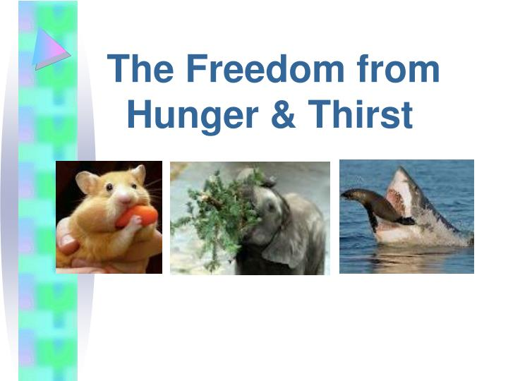 The Freedom from Hunger & Thirst