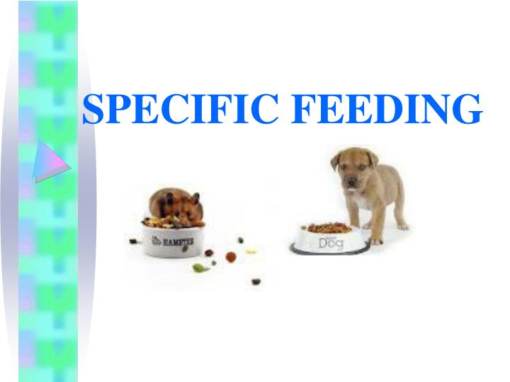 SPECIFIC FEEDING