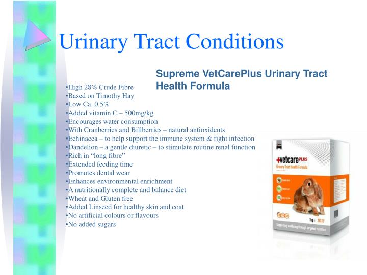 Urinary Tract Conditions