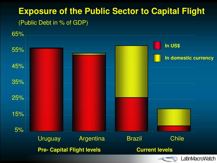 Exposure of the Public Sector to Capital Flight