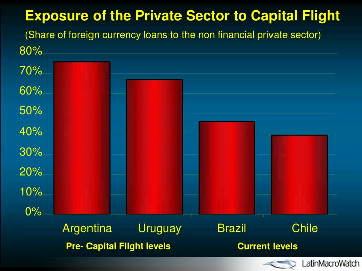Exposure of the Private Sector to Capital Flight