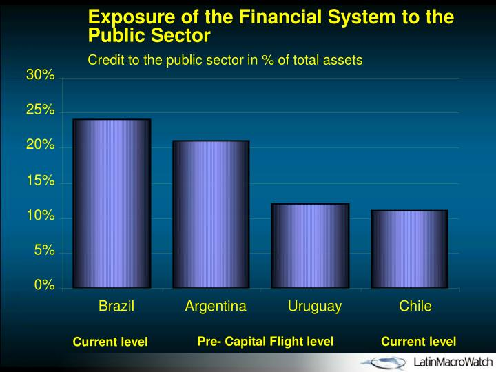 Exposure of the Financial System to the Public Sector