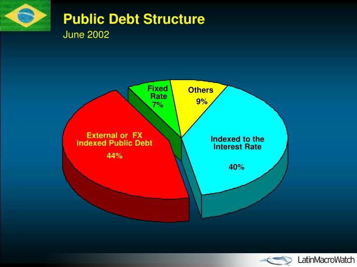 Public Debt Structure