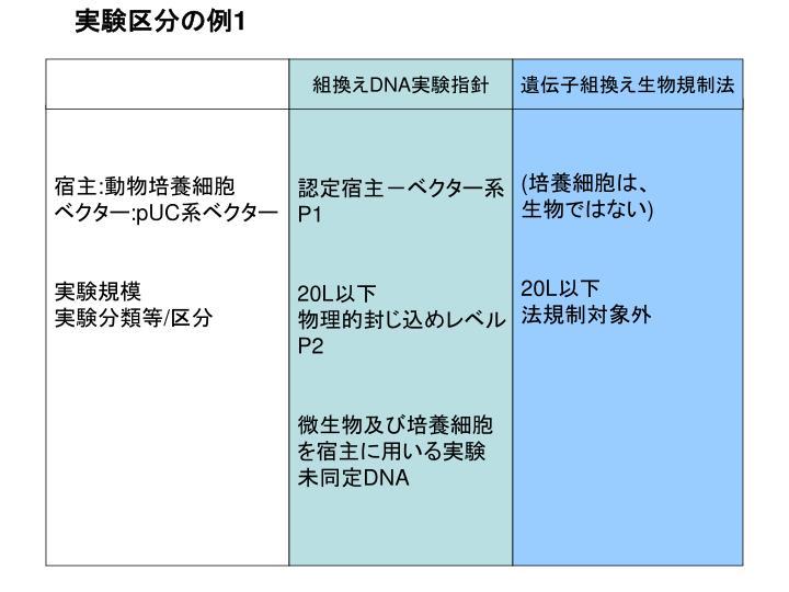 実験区分の例