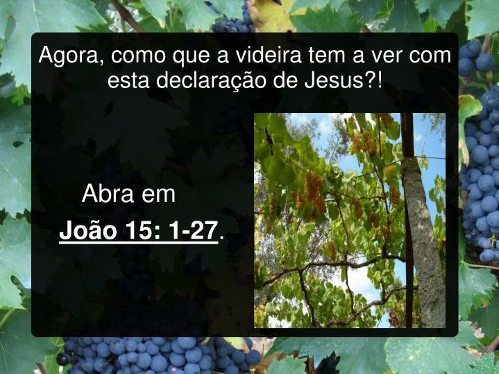 Agora, como que a videira tem a ver com esta declaração de Jesus?!