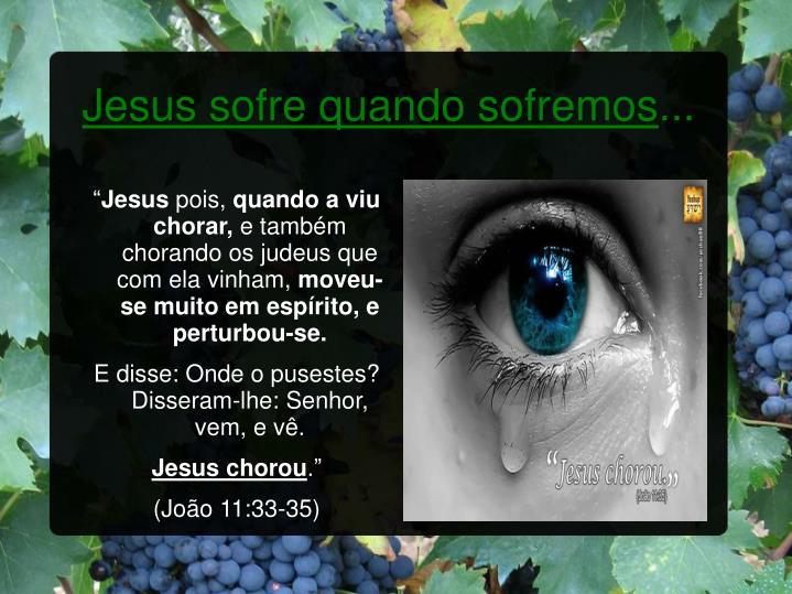 Jesus sofre quando sofremos