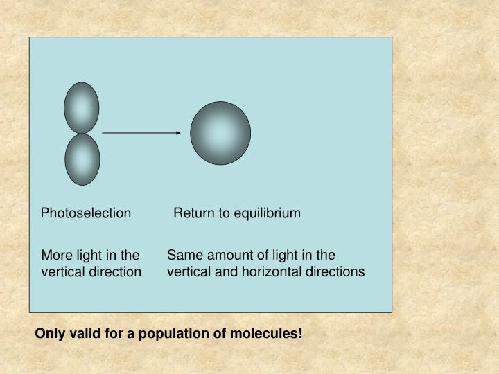 Photoselection           Return to equilibrium