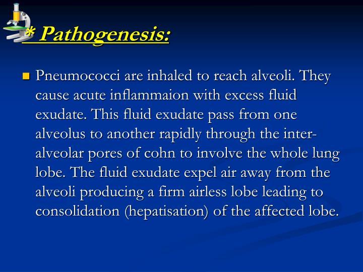 * Pathogenesis: