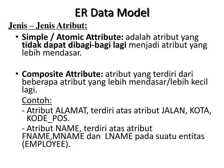 ER Data Model
