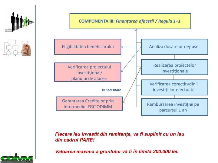 COMPONENTA III: