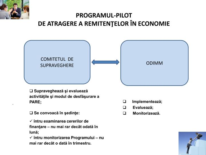 PROGRAMUL-PILOT