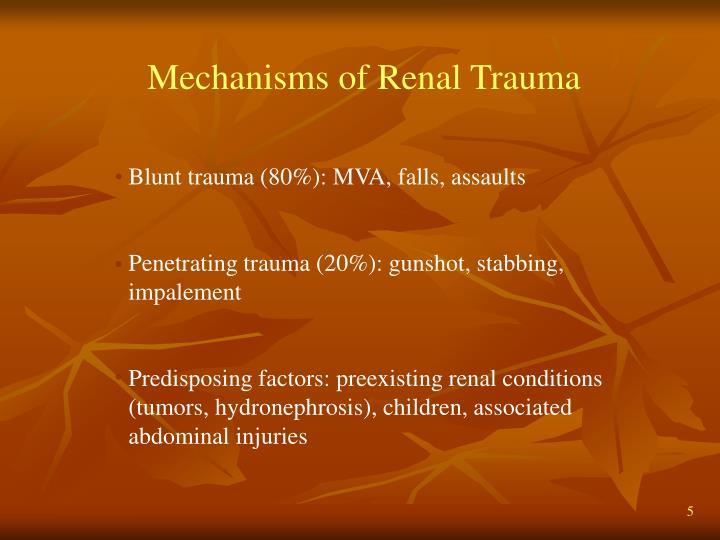 Mechanisms of Renal Trauma