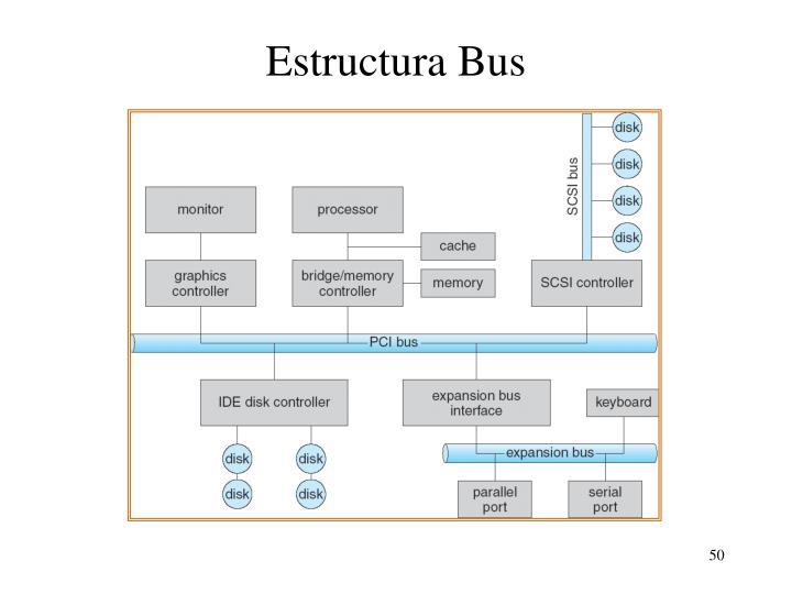 Estructura Bus