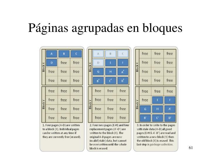 Páginas agrupadas en bloques