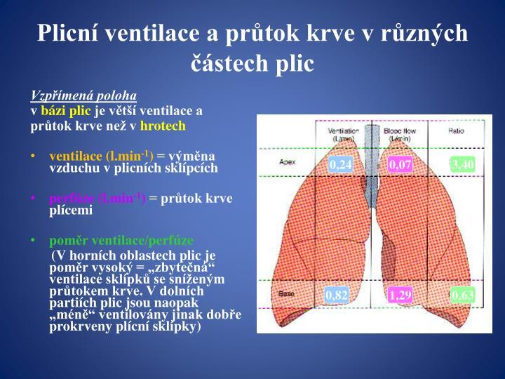 Plicní ventilace a průtok krve v různých částech plic