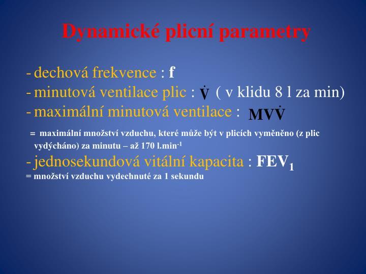 Dynamické plicní parametry