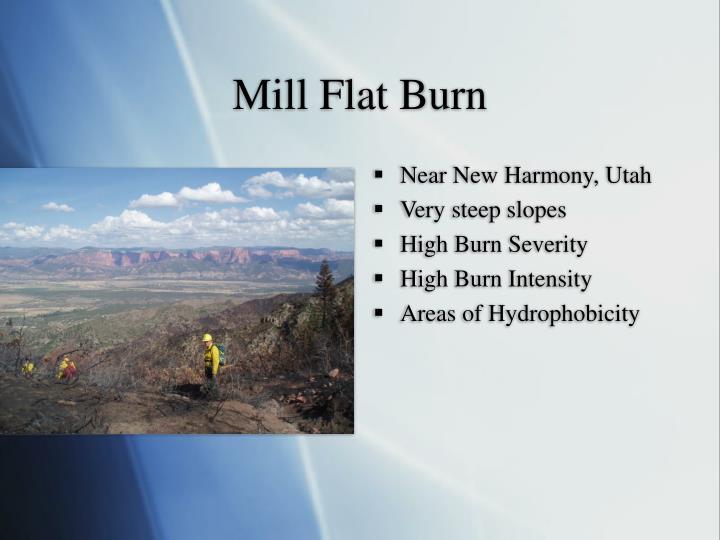 Mill Flat Burn