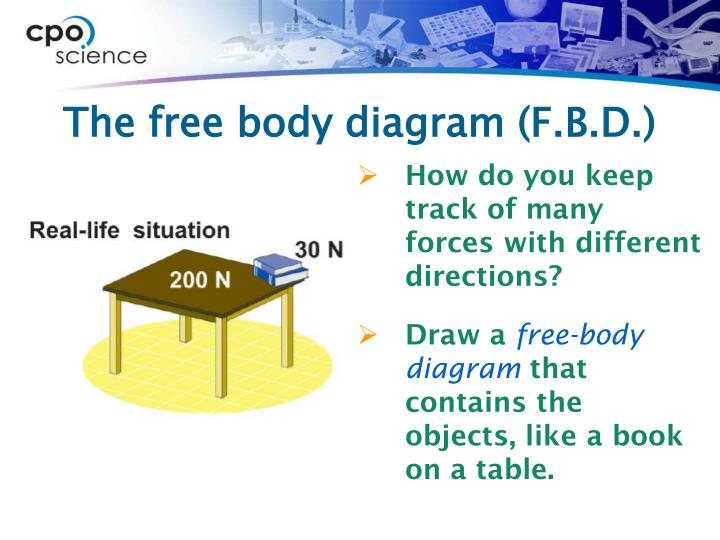 The free body diagram (F.B.D.)